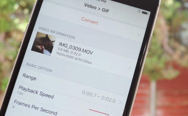 cara-gampang-membuat-gif-dari-video-atau-foto-langsung-di-iphone