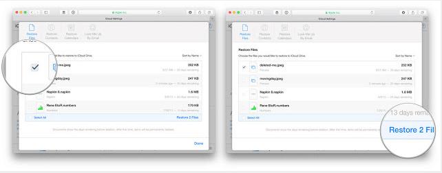 Cara Mengembalikan File yang Terhapus dari iCloud
