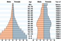 Piramida-populasi-citra-fungsi-pemahaman